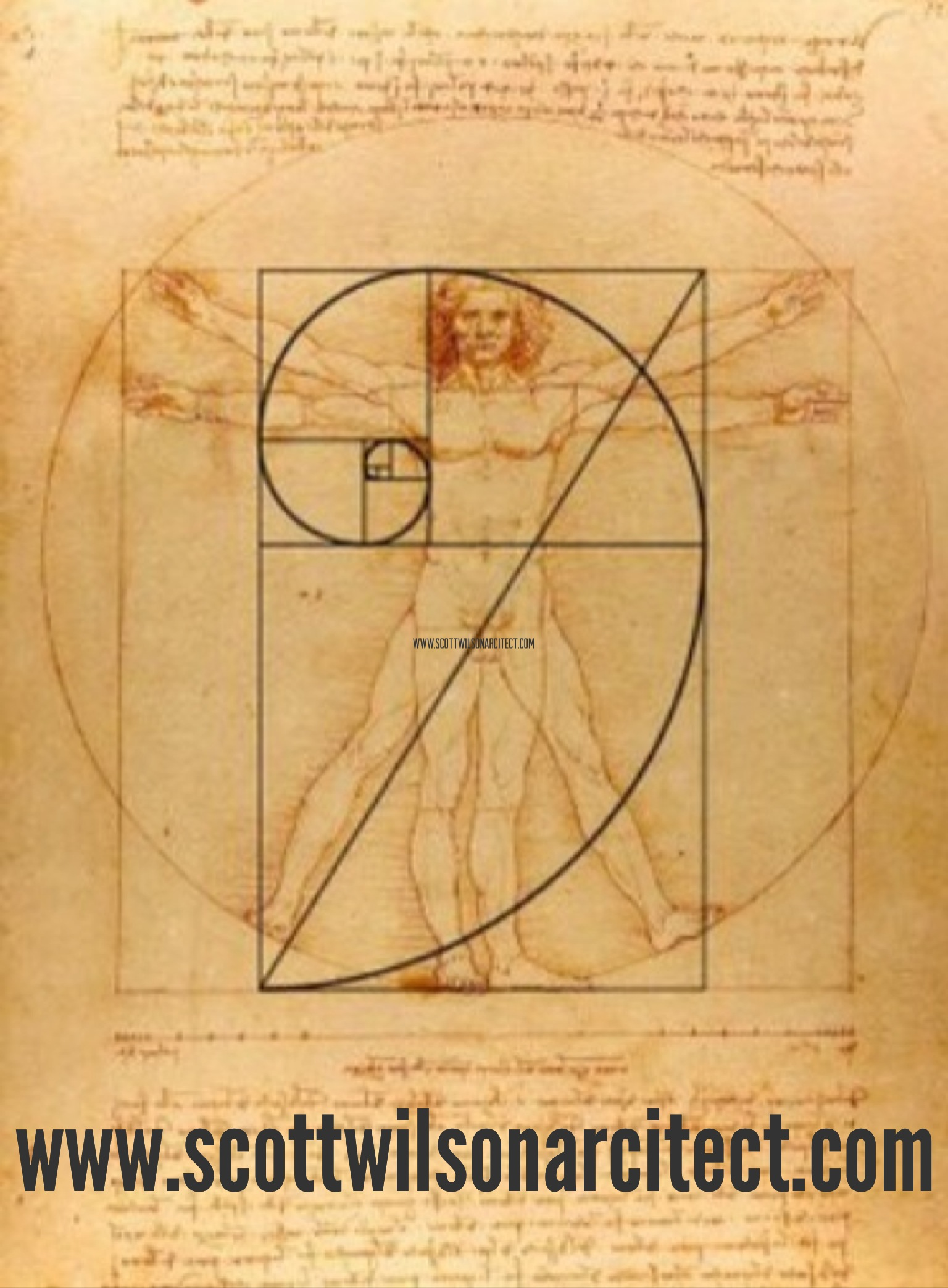 +What is the Golden Ratio?
